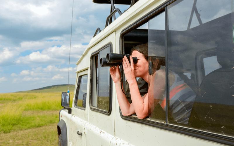 top organize a safari