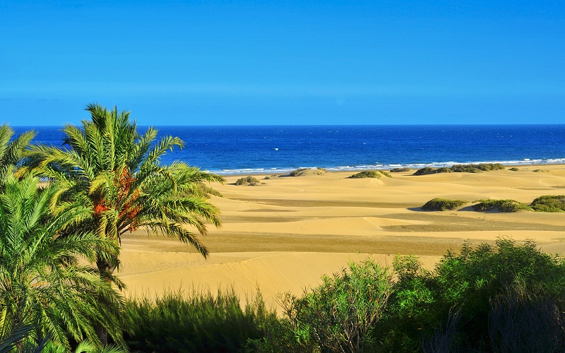 Best beaches with the blue flag
